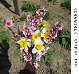 Bouquet Of Flowers Peach ...
