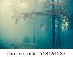Amazing Bluish Foggy Light In...