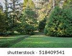 the natural landscape park in... | Shutterstock . vector #518409541