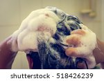 young woman washing hair with... | Shutterstock . vector #518426239