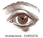 old engraving illustration of... | Shutterstock . vector #51853276