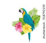 Illustration Parrot Ara ...