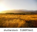 Yellow Field And Mountain....