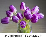 Purples Tulips Bouquet In Spring