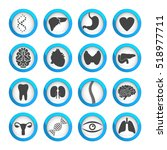 human organs and parts icon set ... | Shutterstock . vector #518977711