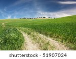 a dirt road on a hill of green... | Shutterstock . vector #51907024