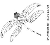 Vector Dragon Fly Silhouette....