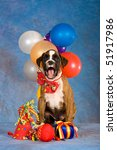 brindle boxer puppy with... | Shutterstock . vector #51917986