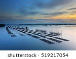 Oyster Farm In The Sea At...