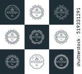 boutique  beauty logo series | Shutterstock .eps vector #519331291