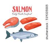 Set Salmon Vector Illustration...