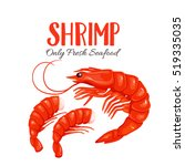 shrimp vector illustration in... | Shutterstock .eps vector #519335035
