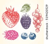 hand drawn set of berries.... | Shutterstock .eps vector #519420529