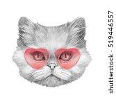 Persian Cat In Love  Portrait...