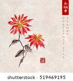 poinsettia hand drawn with ink... | Shutterstock .eps vector #519469195