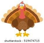 Thanksgiving Turkey Bird...