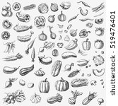 set of various hand drawn... | Shutterstock .eps vector #519476401