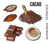 hand drawn pile of cocoa powder ... | Shutterstock .eps vector #519561415
