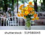 Yellow Cosmos Flowers Decorate...