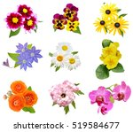Assorted Colorful Flowers Bunch ...