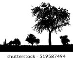 silhouette of tree  bush with... | Shutterstock .eps vector #519587494