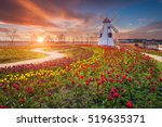 Tulip And Beautiful Landscape...