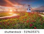 Tulip And Beautiful Landscape...