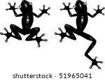 Vector Illustration Of A Frog....