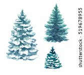 Winter Christmas Trees Set ...