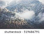 winter forest clouds landscape... | Shutterstock . vector #519686791