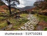 A Cobbled  Stone Walkway In A...