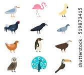 birds vector set illustration... | Shutterstock .eps vector #519873415