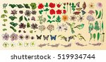 vector set flower with birds... | Shutterstock .eps vector #519934744