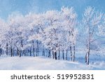 Winter Landscape With Falling...