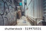 walking via hidden gate | Shutterstock . vector #519970531