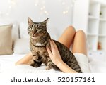 Stock photo pets comfort christmas winter and people concept young woman with cat lying in bed at home 520157161