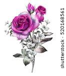 watercolor flowers. romantic... | Shutterstock . vector #520168561