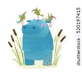 Wildlife Hippo With Cute Birds...