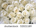 Stock photo white roses background 52021189