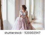 young beautiful woman model in... | Shutterstock . vector #520302547