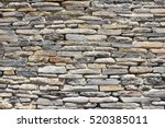 natural pattern of decorative...   Shutterstock . vector #520385011