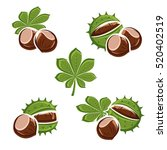 chestnut set. vector | Shutterstock .eps vector #520402519