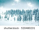 christmas background of snowy... | Shutterstock . vector #520480231