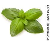Sweet Basil Herb Leaves...