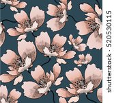 floral pattern  seamless in... | Shutterstock .eps vector #520530115