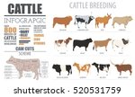 Cattle Breeding Farm...