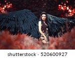 black angel.beautiful sexy girl ... | Shutterstock . vector #520600927