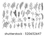 hand drawn vector winter... | Shutterstock .eps vector #520652647