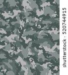 Fashionable Camouflage Pattern...