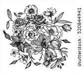 vintage vector floral...   Shutterstock .eps vector #520844941